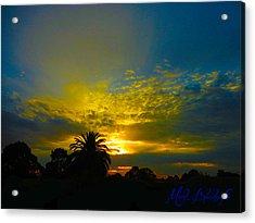 Silken Sunset Acrylic Print