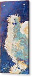 Silkie Rooster Acrylic Print by Tracy L Teeter