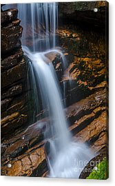 Silky Smooth Acrylic Print
