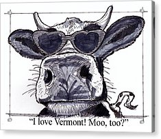 Acrylic Print featuring the drawing Silly Cow From Vermont by Richard Wambach