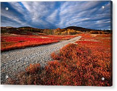 Silsby Plains Acrylic Print by Patrick Downey