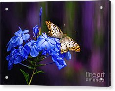 Silver And Gold Acrylic Print by Lois Bryan