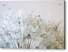 Silver And Gold Acrylic Print by Marianna Mills
