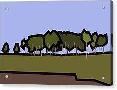 Silver Birch Acrylic Print by Kenneth North