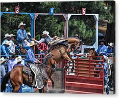 Acrylic Print featuring the photograph Silver Buckle Chute #4 by Jan Davies