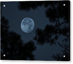 Acrylic Print featuring the photograph Silver Cast Of Harvest Moon by Jeremy McKay