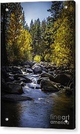 Silver Creek Acrylic Print by Mitch Shindelbower