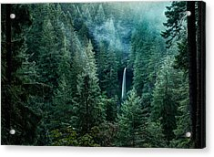 Acrylic Print featuring the photograph Silver Falls State Park by Brian Bonham