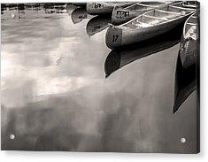 Silver Fish II Acrylic Print by Jon Glaser