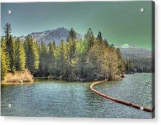 Silver Lake 3 Acrylic Print