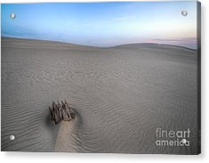 Silver Lake Sand Dunes Acrylic Print by Twenty Two North Photography