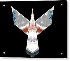 Silver Plane Acrylic Print