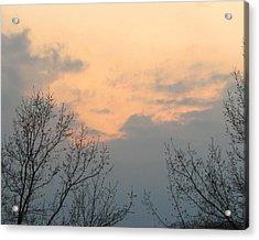 Silver Springs Sky Acrylic Print by Jaime Neo