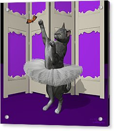 Silver Tabby Ballet Cat On Paw-te Acrylic Print by Andre Price