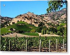 Silverado Trail  Napa Valley California Acrylic Print by Ron Bartels