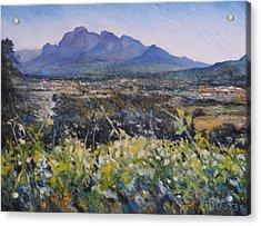 Simonsberg Cape Town South Africa Acrylic Print by Enver Larney