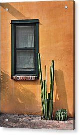 Acrylic Print featuring the photograph Simple Design by Barbara Manis