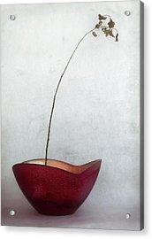 Simplified Acrylic Print