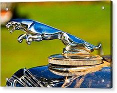 Simply Jaguar-front Emblem Acrylic Print by Eti Reid