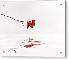Simply Leaves Acrylic Print