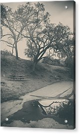 Simply Pretend Acrylic Print by Laurie Search