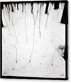 Simulacrum -11.2 Acrylic Print by Alex Zhul