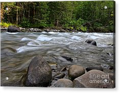 Singing Creek Acrylic Print by Tim Rice