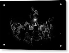 Singing To The Night Acrylic Print