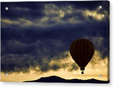 Single Ascension Acrylic Print by Carol Leigh