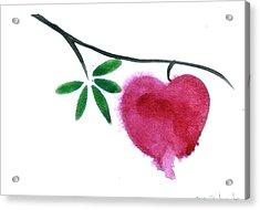 Single Bleeding Heart Acrylic Print by Deb Babcock