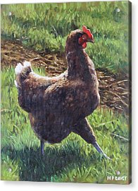 Single Chicken Walking Around On Grass Acrylic Print by Martin Davey