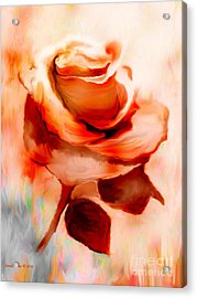 Single Rose Painting Acrylic Print by Annie Zeno