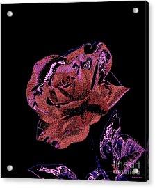Single Rose X Acrylic Print