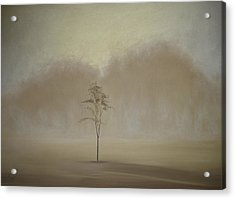Single Tree - Pastel Acrylic Print by Ben Kotyuk
