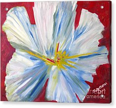 Single White Flower Acrylic Print