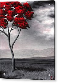Singled Out Red Acrylic Print by Erin Scott