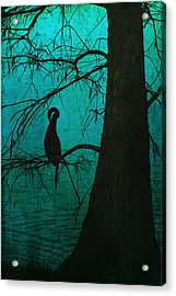 Singular Anhinga  Acrylic Print