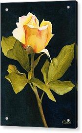Singular Beauty Acrylic Print