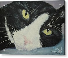 Sissi The Cat 1 Acrylic Print