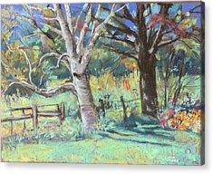 Sister Trees Acrylic Print