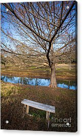 Acrylic Print featuring the photograph Sit And Dream by John Wadleigh