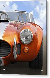 Sitting Pretty - Cobra Acrylic Print by Mike McGlothlen