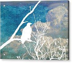 Sitting Watching Waiting Acrylic Print by Candace Fowler