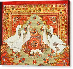 Six Geese A-laying Acrylic Print by Ditz
