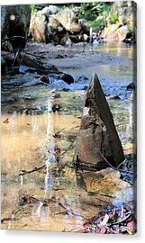 Six Mile Creek Acrylic Print by David Rich
