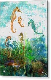 Six Seahorses In A Sea Garden Acrylic Print by Nancy Gorr