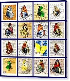 Acrylic Print featuring the painting Sixteen Butterflies by Marian Cates