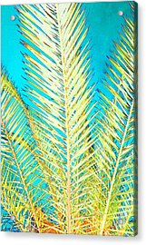 Sketchy Palm Fronds Acrylic Print
