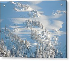 Acrylic Print featuring the photograph Ski by Karen Horn