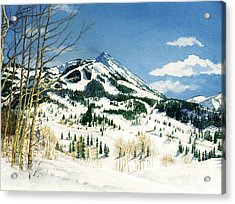 Skiers Paradise Acrylic Print by Barbara Jewell